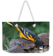 Baltimore Oriole Drinking Weekender Tote Bag