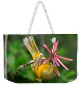 Baltimore Oriole Feeding On Coral Bean Weekender Tote Bag