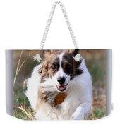 Bama - Pets - Dogs Weekender Tote Bag
