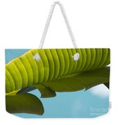 Banana Leaf And Maui Sky Weekender Tote Bag