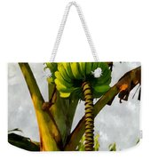 Banana Trees With Fruits And Flower In Lush Tropical Garden Weekender Tote Bag