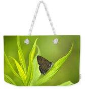 Banded Hairstreak Butterfly Resting On Green Leaf Weekender Tote Bag