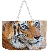 Bandhavgarh Tigeress Weekender Tote Bag