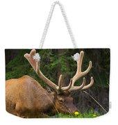 Banff Elk Weekender Tote Bag
