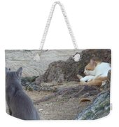 Barbados Cat Family Weekender Tote Bag