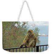 Barbary Macaque  Weekender Tote Bag