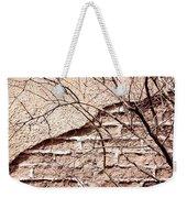 Bare Tree Adobe Wall Weekender Tote Bag by Joe Kozlowski
