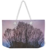 Bare Trees And Autumn Sky Weekender Tote Bag