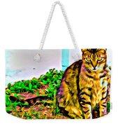 Barn Kitty Weekender Tote Bag