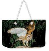Barn Owl Alights Weekender Tote Bag
