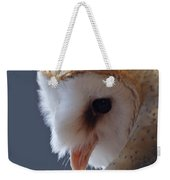 Barn Owl Dry Brushed Weekender Tote Bag