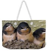 Barn Swallows 1 Weekender Tote Bag