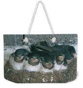 Barn Swallows Weekender Tote Bag by Hans Reinhard