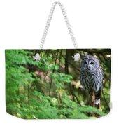 Barred Owl In Forest Weekender Tote Bag