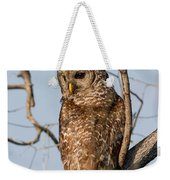 Barred Owl Okefenokee Swamp Georgia Weekender Tote Bag