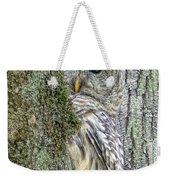 Barred Owl Peek A Boo Weekender Tote Bag