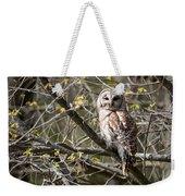 Barred Owl Square Weekender Tote Bag