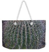 Barrel Cactus With Fruit Weekender Tote Bag