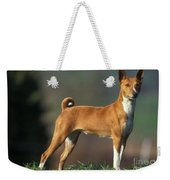 Basenji Dog Weekender Tote Bag