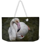 Bashful And Shy Flamingo. Weekender Tote Bag