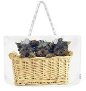 Basket Of Yorkies Weekender Tote Bag