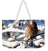 Basking In Winter Light Weekender Tote Bag