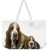 Basset Hound Dogs Weekender Tote Bag