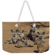 Bat-eared Fox Pups Weekender Tote Bag