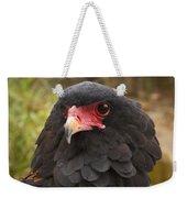 Bateleur Eagle Zimbabwe Weekender Tote Bag