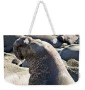 Bull Elephant Seal Battle Scars Weekender Tote Bag