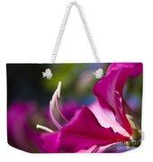 Bauhinia Purpurea - Hawaiian Orchid Tree Weekender Tote Bag