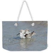 Beach Bird Bath 4 Weekender Tote Bag