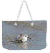 Beach Bird Bath 5 Weekender Tote Bag