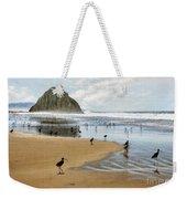 Beach Birds Impasto Weekender Tote Bag