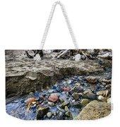 Beach Brook At Scarborough Bluffs Weekender Tote Bag by Elena Elisseeva