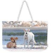 Beach Dogs Weekender Tote Bag