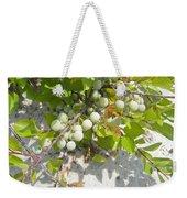 Beach Plum - Prunus Maritima - Island Beach State Park Nj Weekender Tote Bag