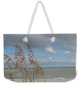 Beachview With Seaoat  Weekender Tote Bag