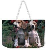 Beagles Weekender Tote Bag