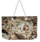 Bear Cave Weekender Tote Bag