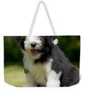 Bearded Collie Puppy Weekender Tote Bag