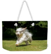Bearded Collie Running Weekender Tote Bag