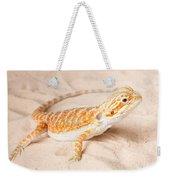 Bearded Dragon Pogona Sp. On Sand Weekender Tote Bag