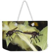 Bearded Robber Flies Weekender Tote Bag