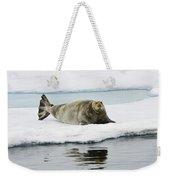 Bearded Seal On Ice Floe Norway Weekender Tote Bag