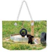 Bears At Play Weekender Tote Bag