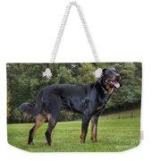 Beauceron Dog Weekender Tote Bag