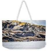 Seals And Rock Scupltures Weekender Tote Bag