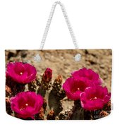 Beautiful Beavertail Cactus Weekender Tote Bag