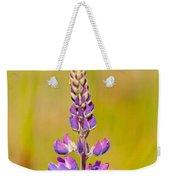 Beautiful Blooming Lupine Flower In Warm Sunlight Weekender Tote Bag